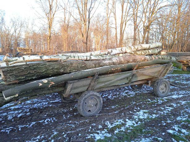 Drewno opałowe mokre