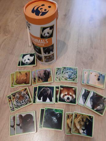 Gra pamięciowa WWF  -puzle