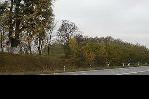 Земля.Коммерция.Вдоль трассы на Хмельницкий.