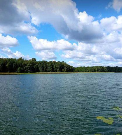 Działka 1 ha szerokość 50m z linią brzegową jeziora Mazury