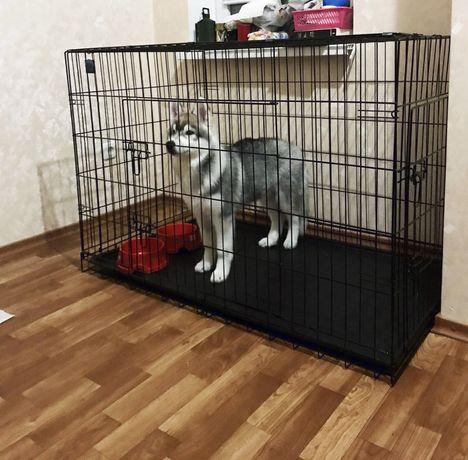 Клітка для собак,клетка для больших собак,вольер,переноска,бокс
