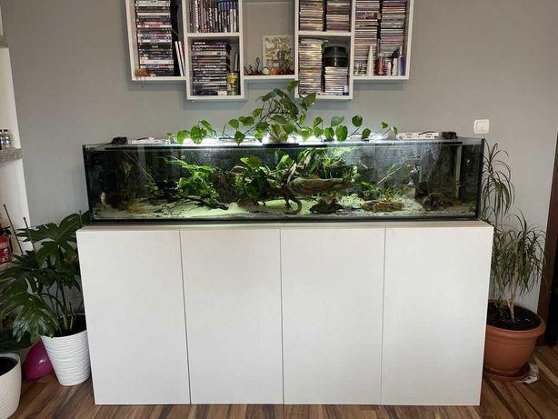 Stelaż pod akwarium, do akwarium,  akwarystyczny, metalowy, terrarium.