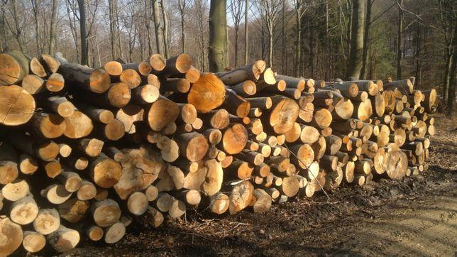 Buk drewno kominkowe wałki metry drewno stosowe