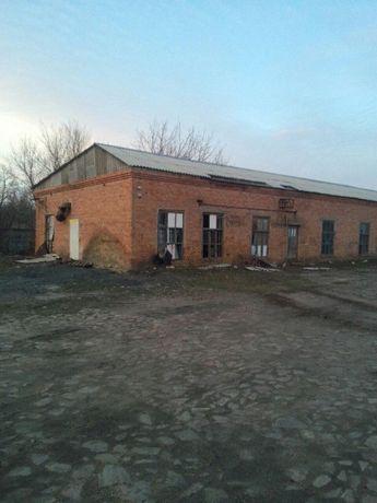 Продаж Комплекс будівель загальна площа -2853,1 м²