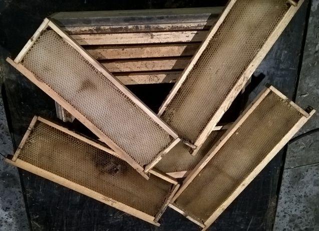 Сушь пчелиная (рамки сотовые) 145мм - 10шт.