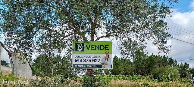 Terreno para VENDA , Mogofores