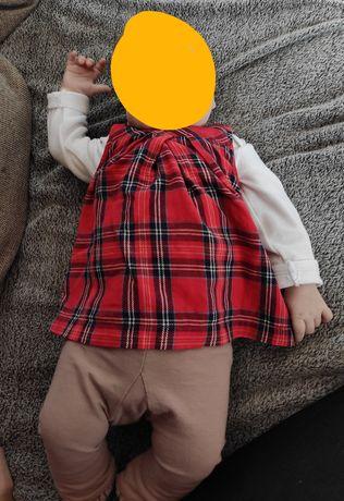 Sukienka tunika hm legi legginsy