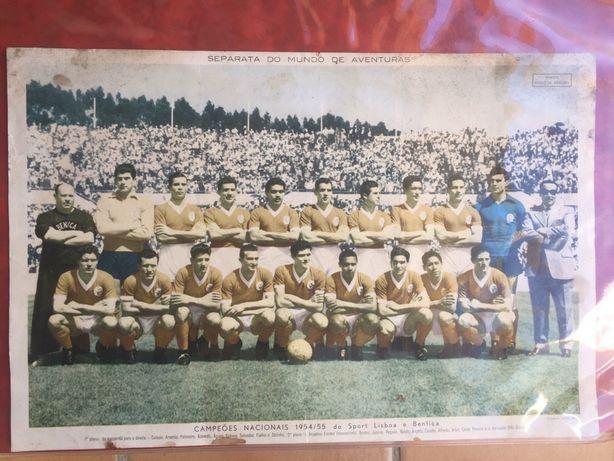 Poster Original de 1955 - Benfica Campeão