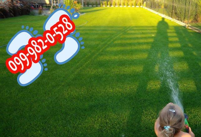 Газонная трава Детские ПЯТОЧКИ низкорослый лилипут газон авторский