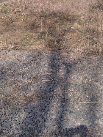 Земельна ділянка біля Інтуриста в парку
