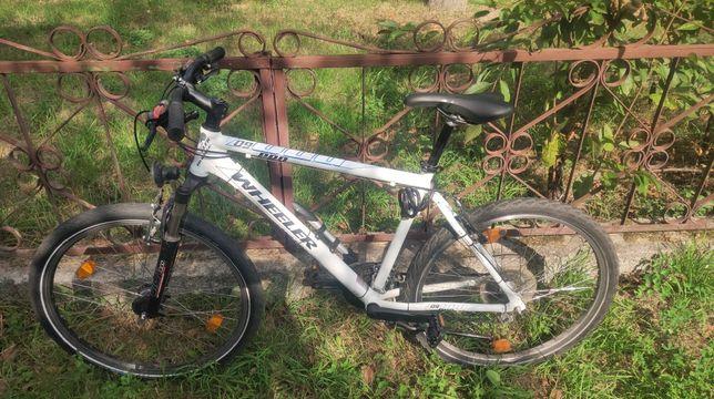 Велосипед Wheeler Pro 09