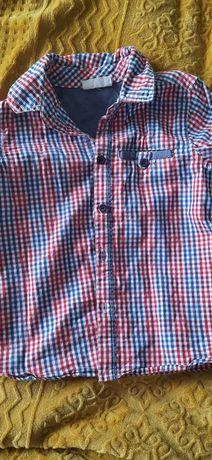 Koszula chłopieca 86 coccodrillo