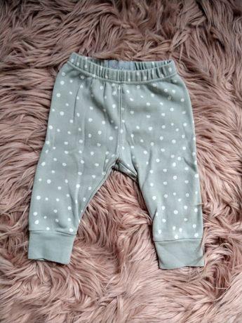 Spodnie dresowe niemowlęce w groszki Bob&Blossom