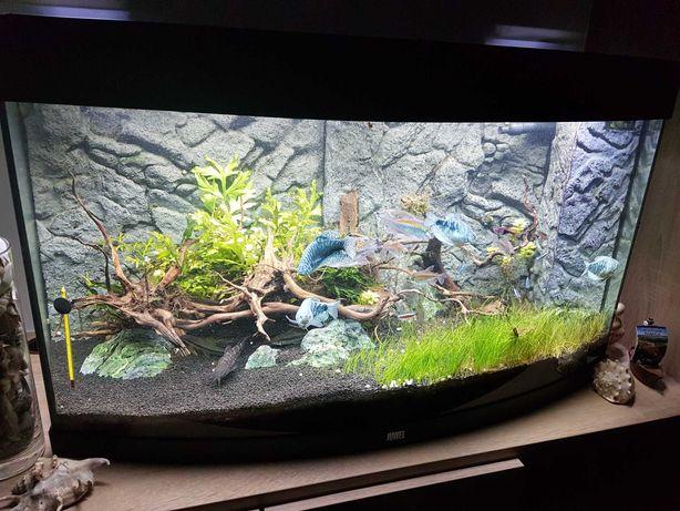 Akwarium JUWEL Vision 180 LED