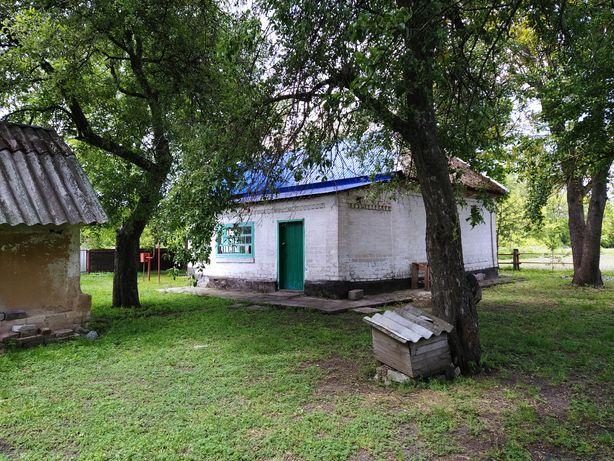 Продам дом в селе Миновка