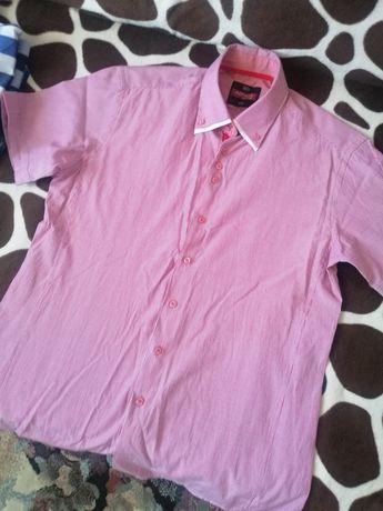 Koszula krótki rękaw L