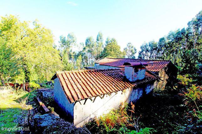 Moradia em Xisto para restaurar entre Braga e Viana do Castelo