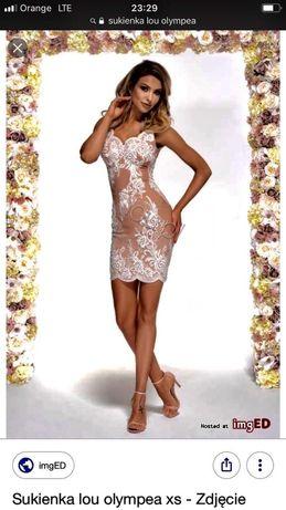 Sukienka Lou ołówkowa z hawtami