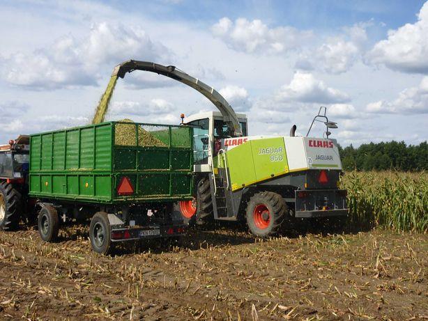 Usługi rolnicze koszenie i młucenie kukurydzy.
