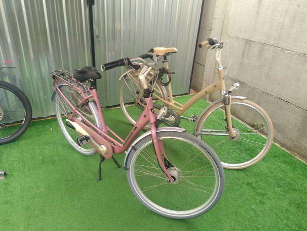 Rowery z Holandii Batavus Mambo