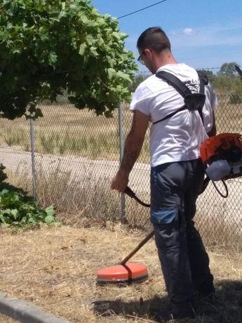 Limpeza de Terrenos/ Mato/ Jardins