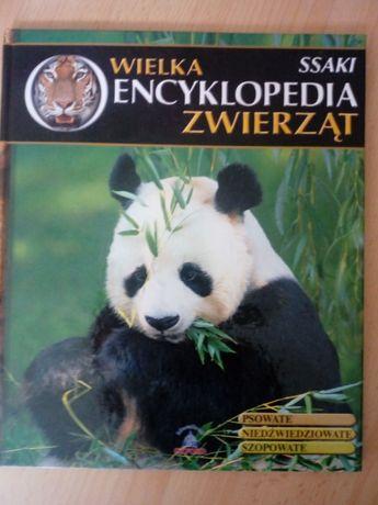 Wielka encyklopedia zwierząt - SSAKI
