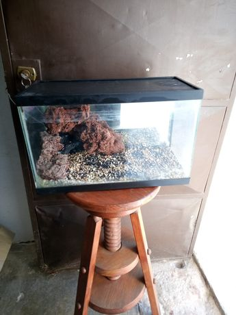 Venda de aquário 20l