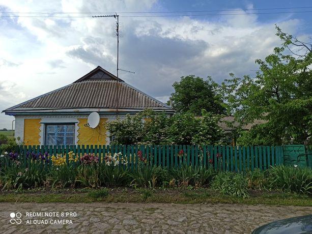 Продам будинок в селі Берестовець торг