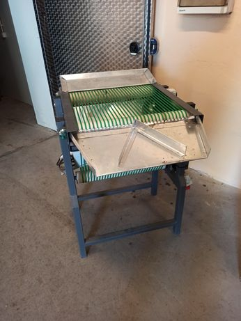 Sortownik kalibrownik borówki borówka amerykańska 12+ taśmociąg sorter