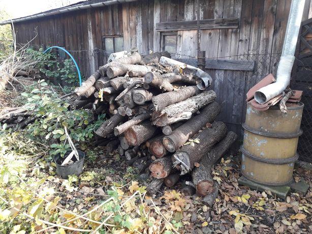 Drewno drzew owocowych do wędzarki około 3 m sześcienne
