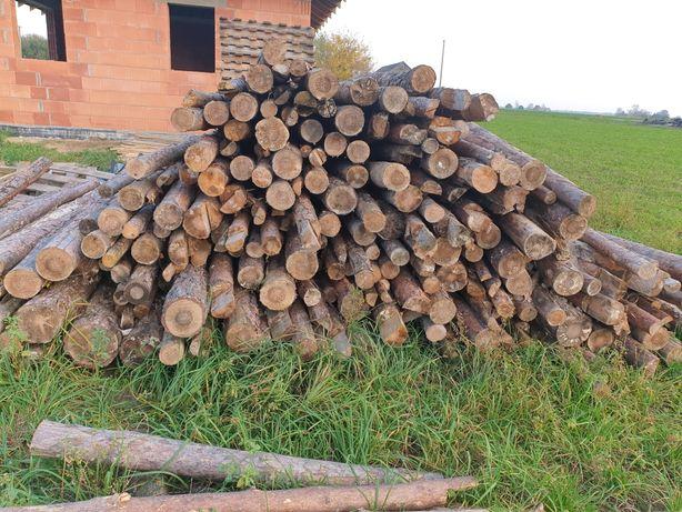 Stemple drewniane 3mb