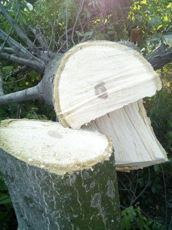 Древесина ореховых и фруктовых деревьев