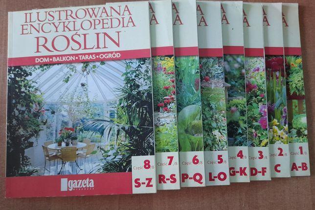 Ilustrowana encyklopedia roślin