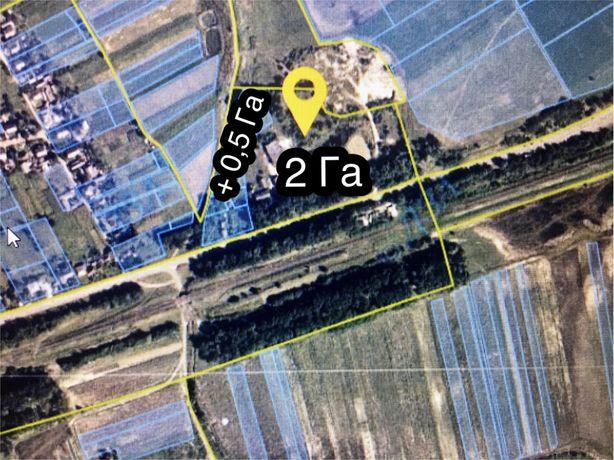 Овощебаза возле границы с Молдовой
