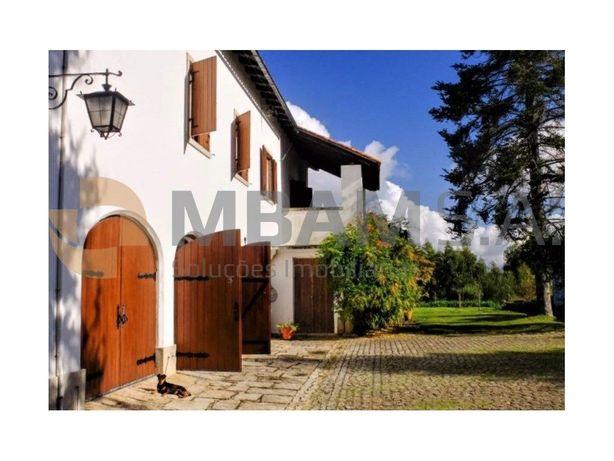 Quinta com vinha, situada em Coimbra