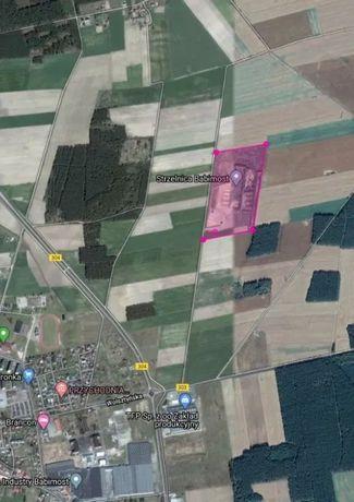 Teren inwestycyjny przemysłowy 10,8 hektara okolice Babimost Lubuskie