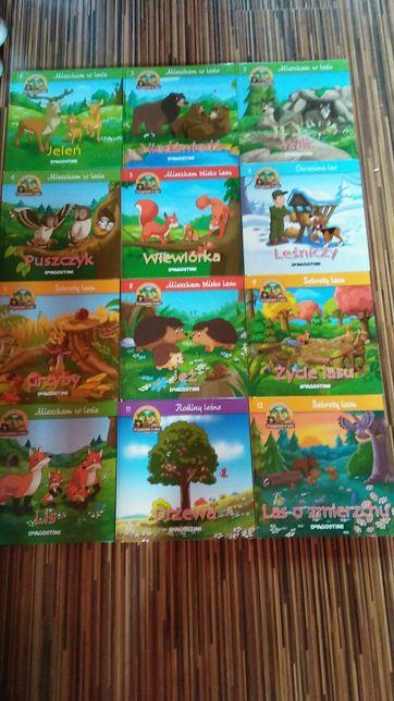 Książki dla dzieci 22szt