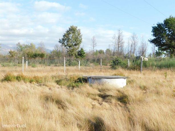 Terreno Agrícola Santa Comba Seia