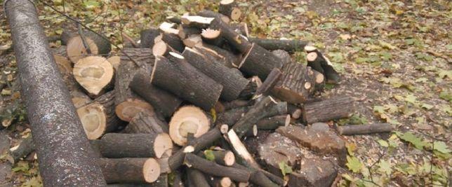 БЛАГОУСТРОЙСТВО УЧАСТКА: спил деревьев, валка леса