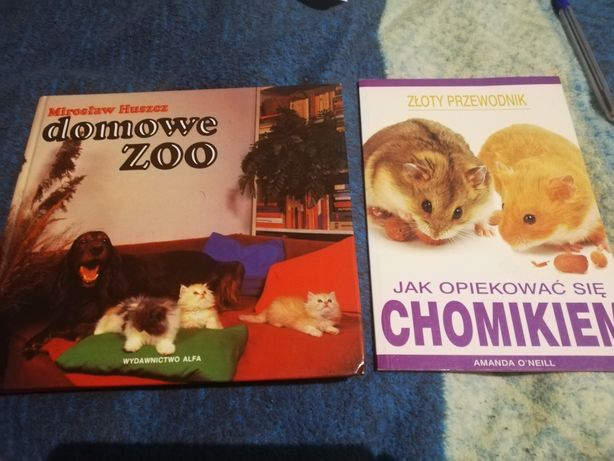 Domowe zoo, jak opiekować się chomikiem