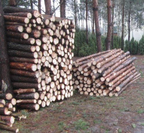 drewno opałowe SOSNA - sosnowe Radom TRANSPORT