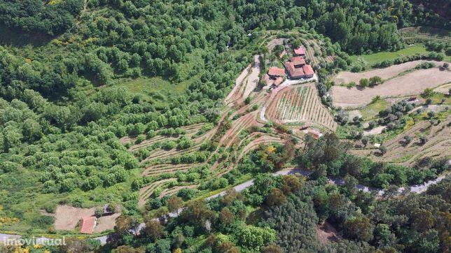 Quinta T4 com 130.000m2 em Infesta, Celorico de Basto