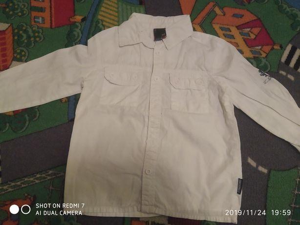 5 koszul H&M 104 - 110