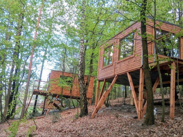 Domki w Drzewach DoliAnna