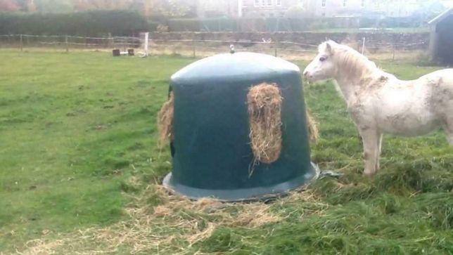 Paśnik karmnik dla koni plastikowy Dzwon Dostawa cały kraj Raty