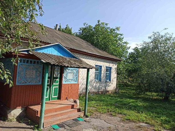 Будинок в с.м.т. Куликівка
