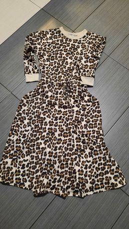 Sukienka pantera