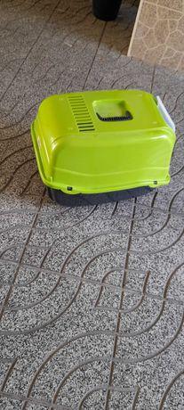 Caixa de areia gato