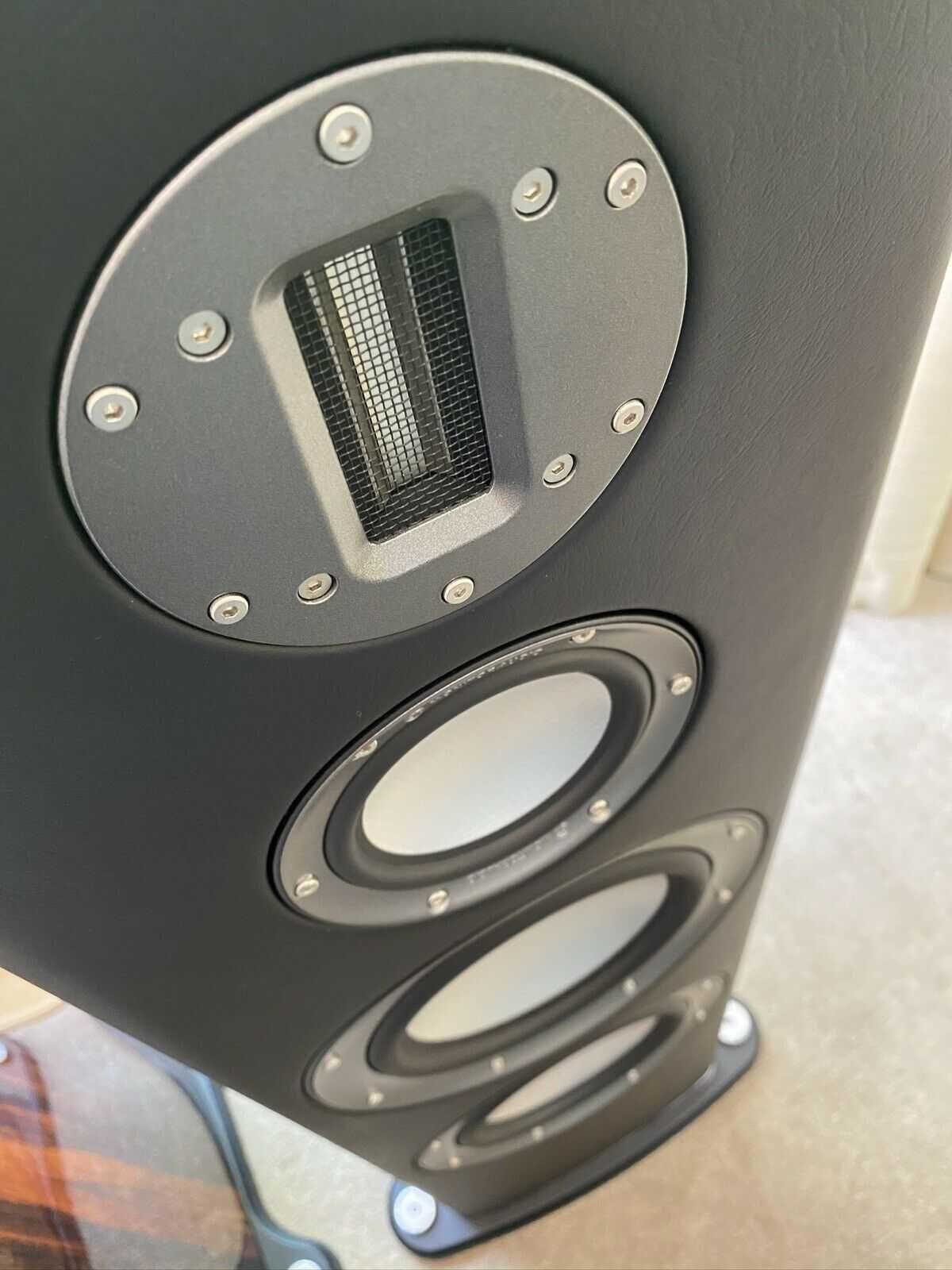 Colunas Monitor Audio PL 300 Platinium