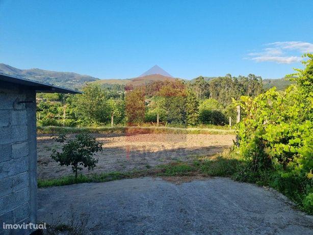 Terreno agrícola em Pico, Vila Verde